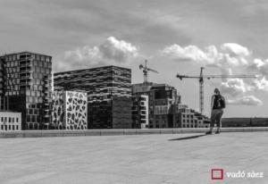 Dona contemplant noves construccions a Oslo